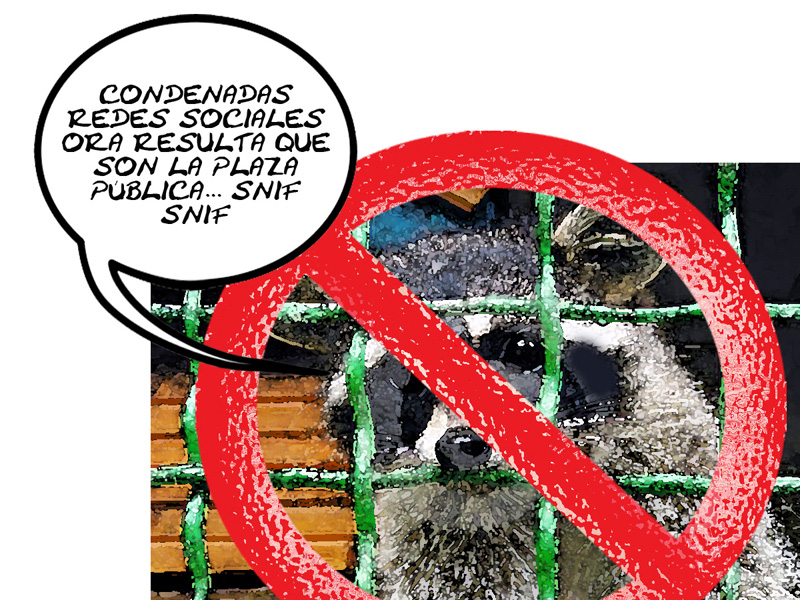 Redes Sociales Antimapaches Contra Autoridades Mediocres ITE, Caricatura Tlaxcala En Linea