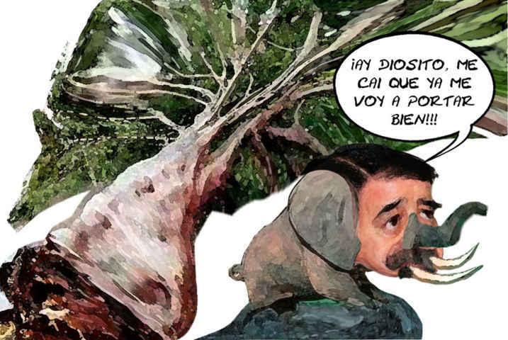 (etlaxcala) Mariano Gonzalez Zarur, Mastodonte Espantado Caida Arboles, Postes, Espectaculares, Viento, Caricatura Tlaxcala En Linea