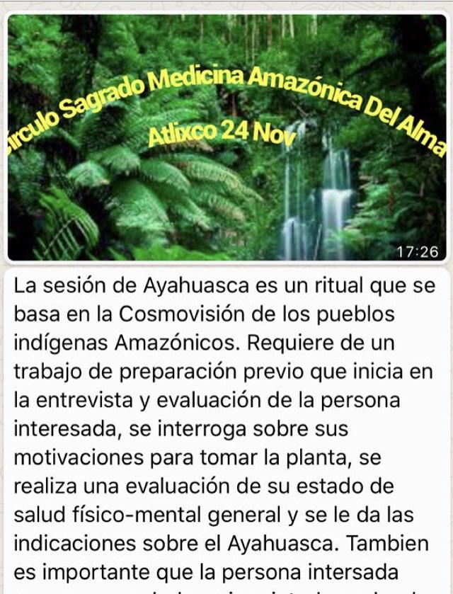AYAHUASCA-01